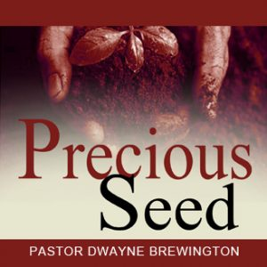 precious-seed