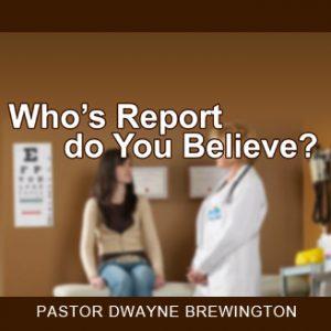 whosreportdo you beleive